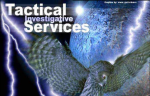 Tactical Investigative Services